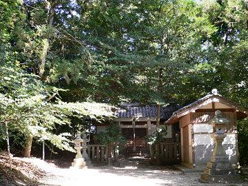 ... 押坂 山口 坐 神社 の クスノキ